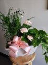 Green Planter with Carnations