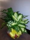 Planter 101