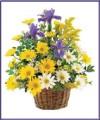 Daisy & Iris Basket