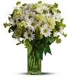 White Daisy & Green Carnations
