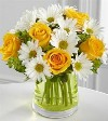 Yellow Roses and White Daisies